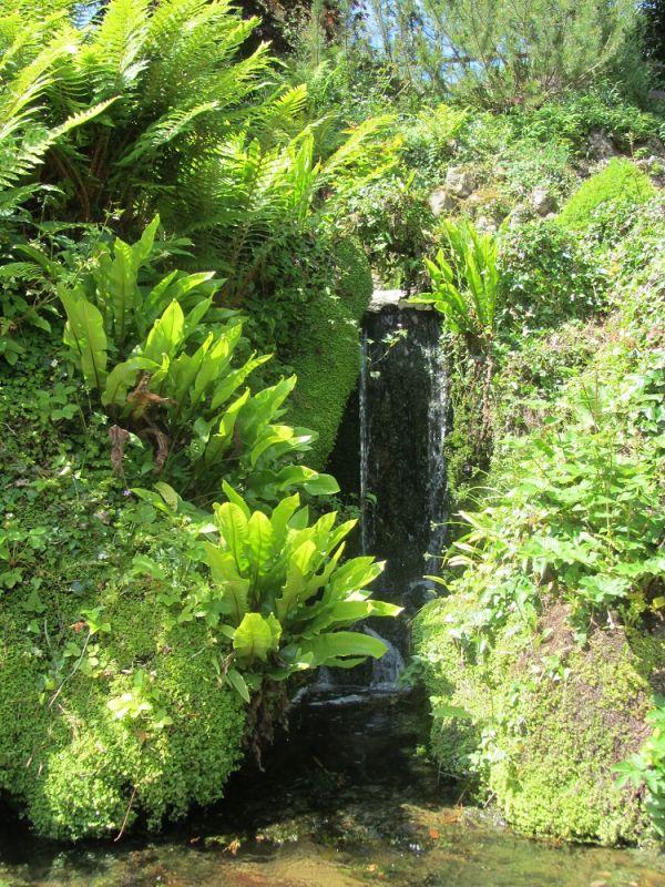 Waterfall (2) resized 600