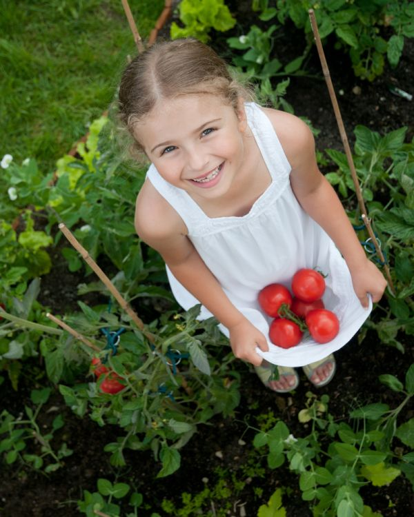Grow Your Own Pizza Garden at Powerscourt Garden Pavilion resized 600