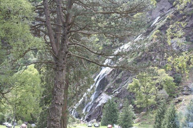 Sensory Nature Trail at Powerscourt Waterfall Review
