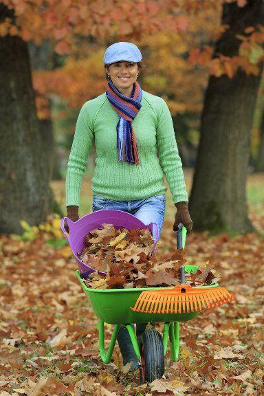 Free Autumn Gardening Course at Powerscourt Garden Pavilion