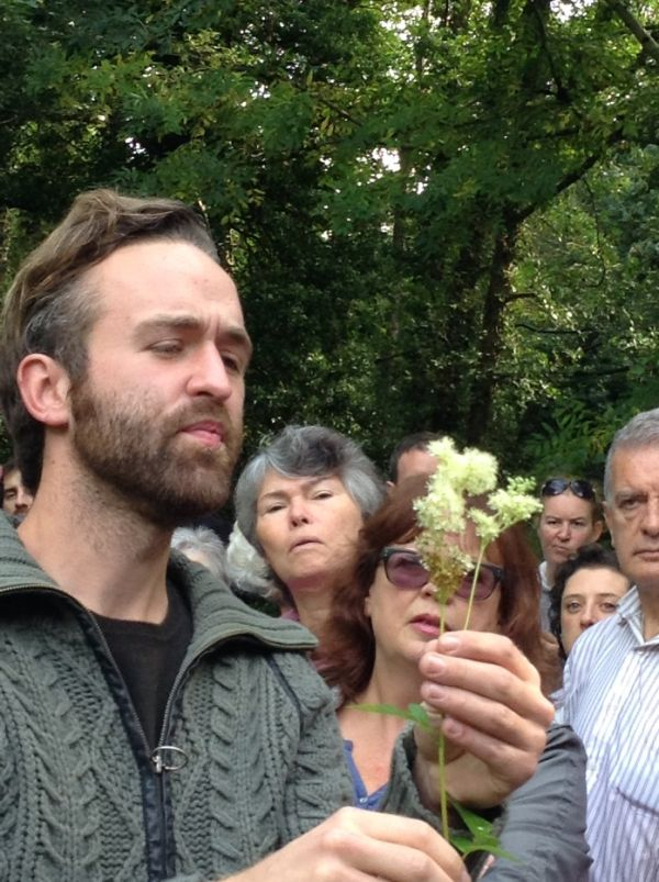 Foraging for Wild Food along the Powerscourt River Walk by Kerry Gordon