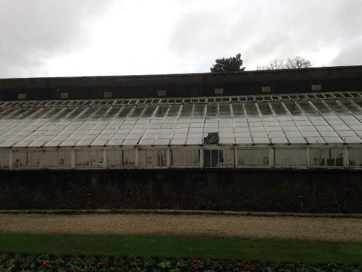 Powerscourt Greenhouse before renovation