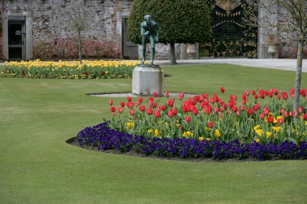 The Annual Tulip Festival at Powerscourt Gardens