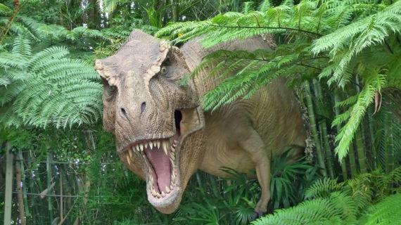 Dinosaur, Jurassic Park. Photograph Credit: Christian De Grandmaison