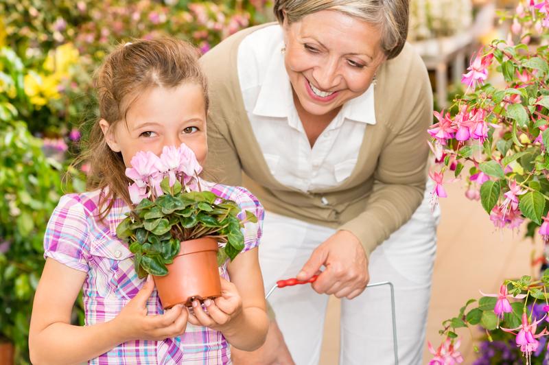 Plan Your Visit to Powerscourt Garden Pavilion