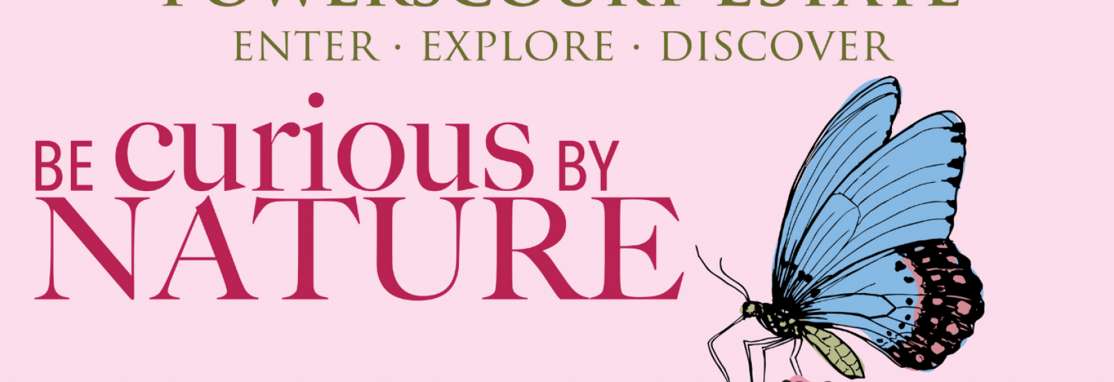 Banner Summer Be Curious by Nature