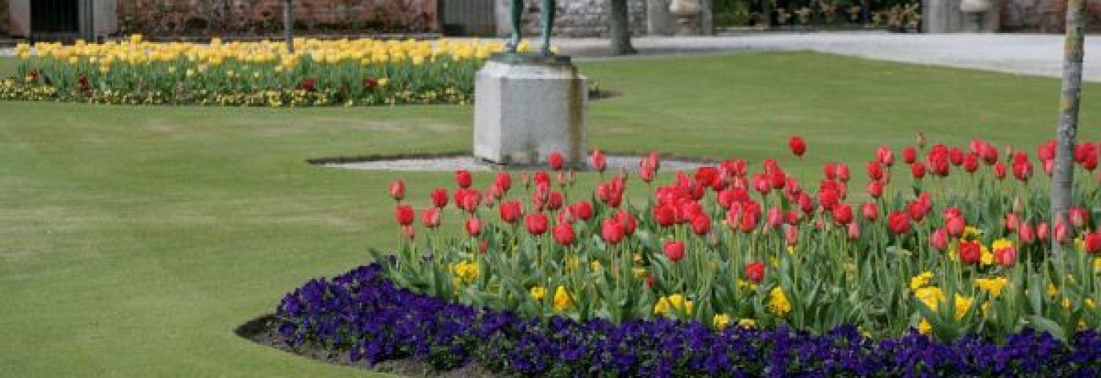 The Annual Tulip Festival at Powerscourt Gardens