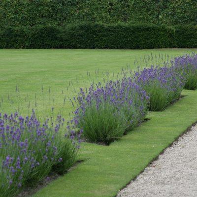 wicklow gardens