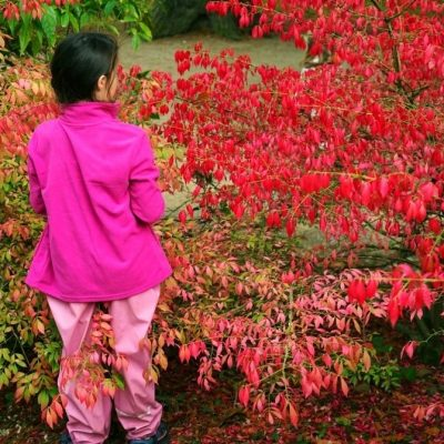 children in japanese gardens