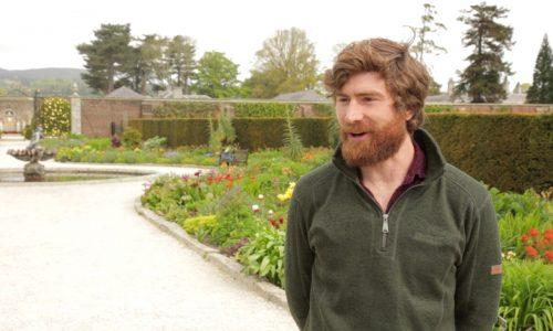 Alex Slazenger Head Gardener